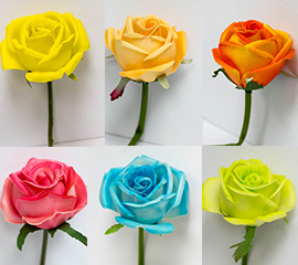 english roses color chart