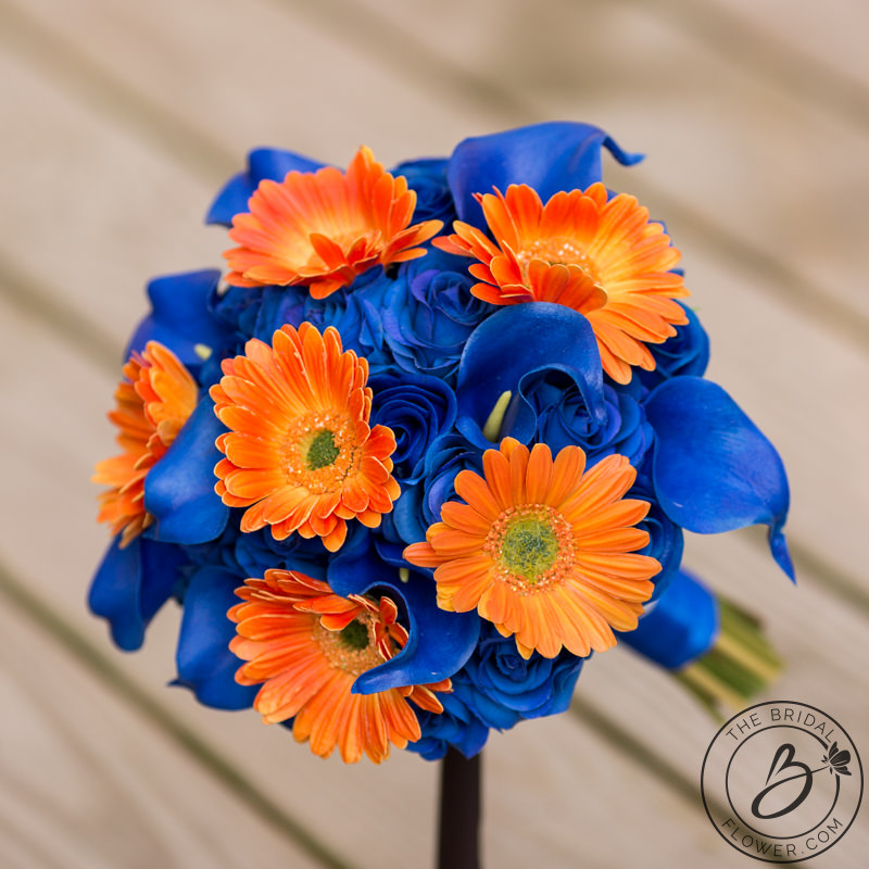 Royal Blue And Orange Roses Gerbera